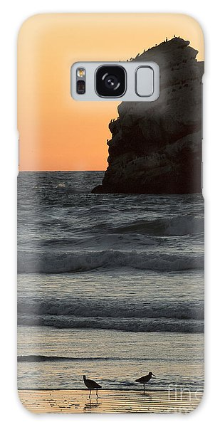 Morro Beach Sunset Galaxy Case by Terry Garvin