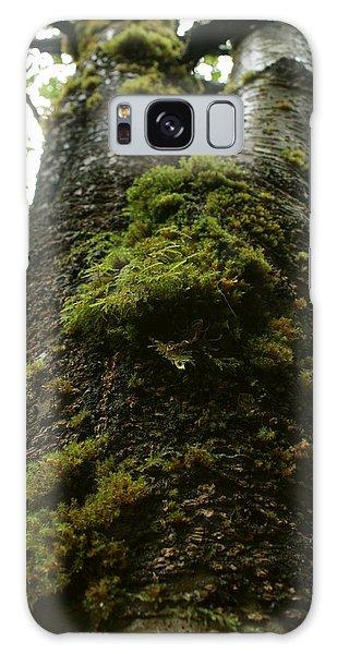 Moss Covered Tree Galaxy Case by Amanda Holmes Tzafrir