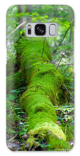 Moss Covered Tree Galaxy Case