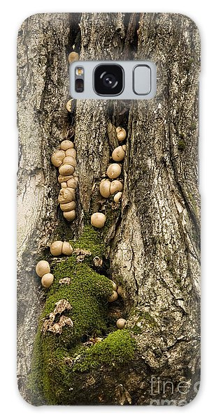 Moss-shrooms On A Tree Galaxy Case