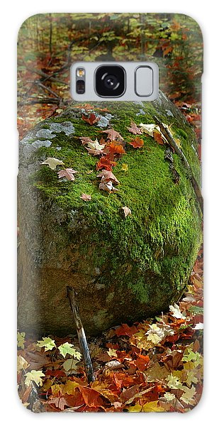 Mossy Rock Galaxy Case