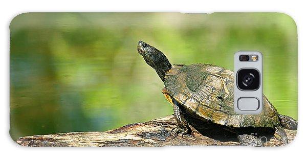 Mossy Turtle Galaxy Case