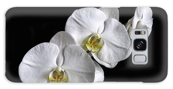 Moth Orchid Trio Galaxy Case
