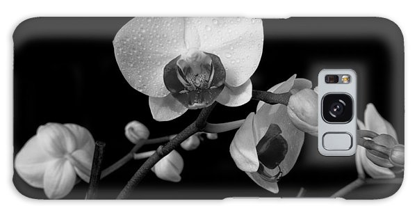 Moth Orchids Galaxy Case
