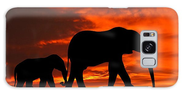 Mother And Baby Elephants Sunset Silhouette Series Galaxy Case