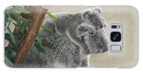 Mother And Child Koalas Galaxy Case