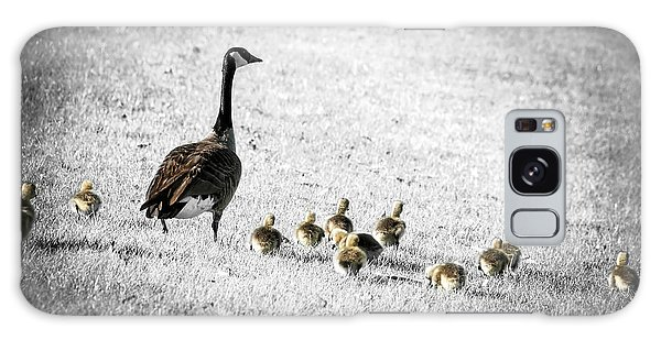 Canada Goose Galaxy Case - Mother Goose by Elena Elisseeva