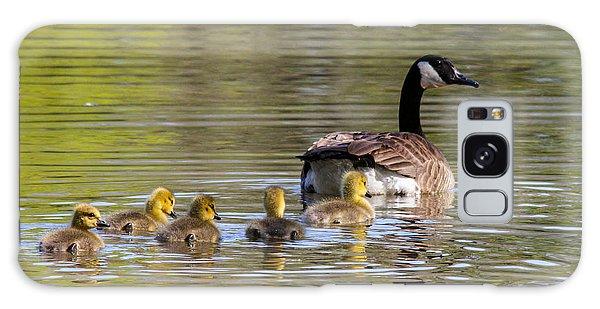 Mother Goose Galaxy Case