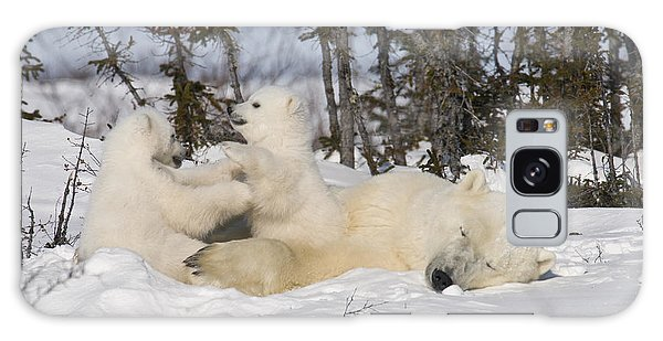 Mother Polar Bear Sleeps While Her Cubs Play Galaxy Case