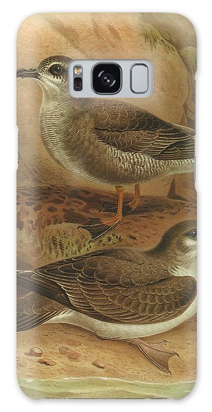Mottled Galaxy Case - Mottled Petrel And Buller's Shearwater by Dreyer Wildlife Print Collections