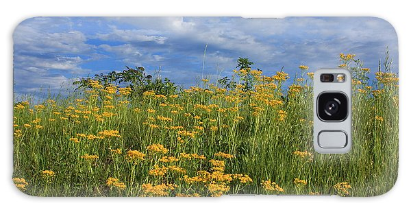 Mount Cheaha Goldenrod-alabama Galaxy Case by Mountains to the Sea Photo