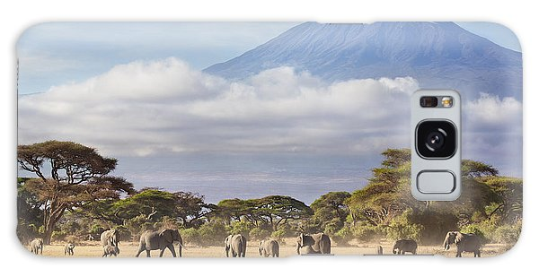 Galaxy Case featuring the photograph Mount Kilimanjaro Amboseli  by Richard Garvey-Williams