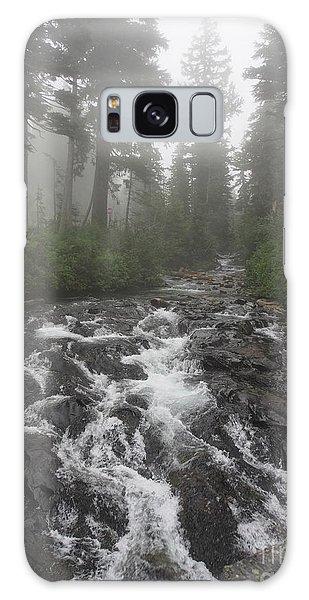 Mount Rainier National Park Galaxy Case