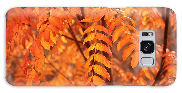 Mountain Ash Leaves - Autumn Galaxy Case by Jim Sauchyn
