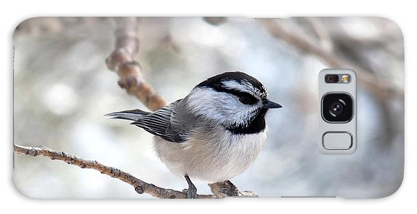 Mountain Chickadee On Branch Galaxy Case
