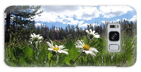 Mountain Daisies Galaxy Case