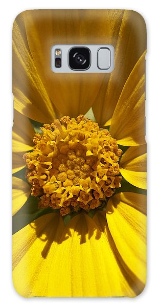 Mountain Daisy Galaxy Case by Jeff Goulden
