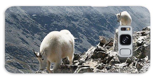 Mountain Goats 2 Galaxy Case