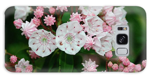 Mountain Laurel Galaxy Case by Annlynn Ward