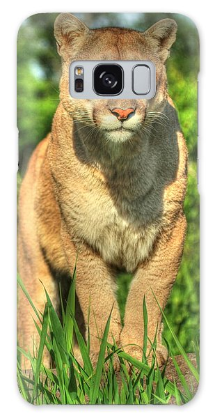 Mountain Lion On Watch Galaxy Case by Myrna Bradshaw
