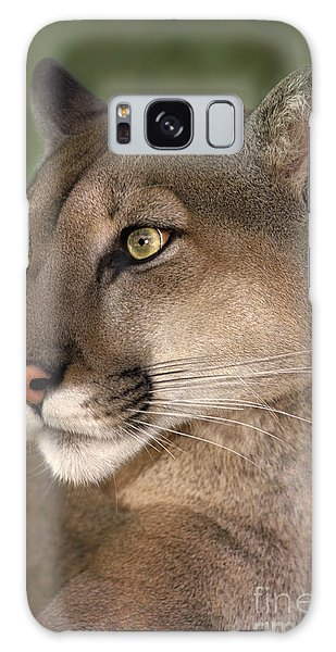 Mountain Lion Portrait Wildlife Rescue Galaxy Case by Dave Welling