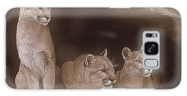Mountain Lion Trio On Alert Galaxy Case by Diane Alexander