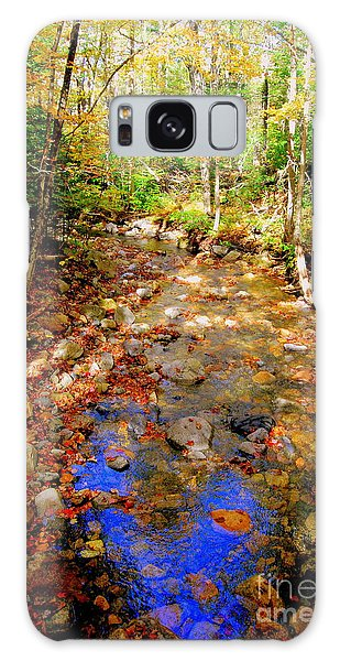 Mountain Stream Covered With Fall Leaves Galaxy Case