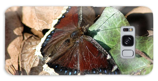 Mourning Cloak Galaxy Case