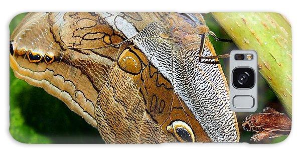 Mournful Owl Butterfly Galaxy Case by Amy McDaniel