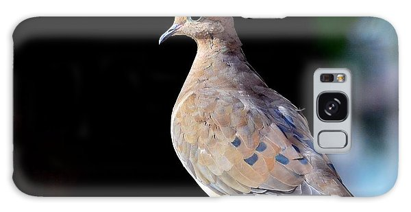 Mourning Dove Galaxy Case by Kathy Eickenberg