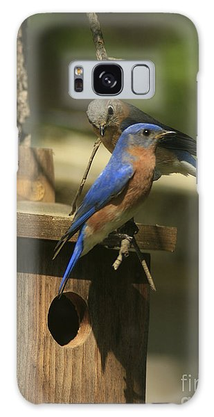 Mr. And Mrs. Bluebird Galaxy Case
