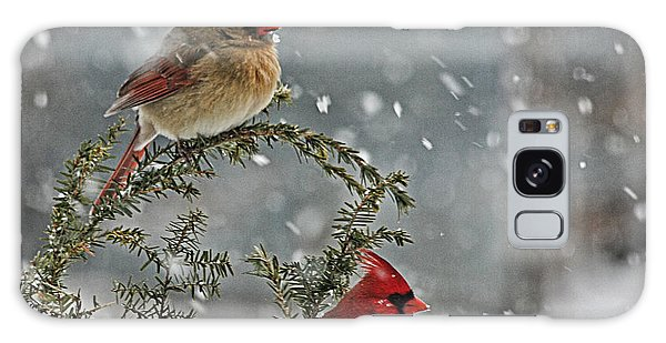 Mr. And Mrs. Cardinal Galaxy Case by Denise Romano