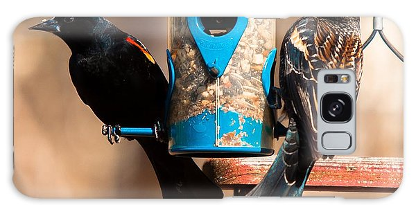 Mr. And Mrs. Red Winged Blackbird Galaxy Case