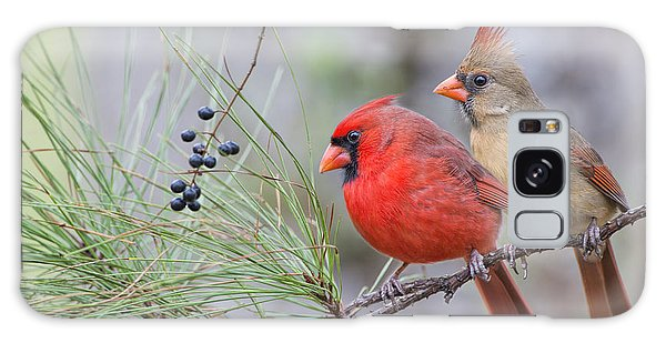 Mr. And Mrs. Redbird In Pine Tree Galaxy Case