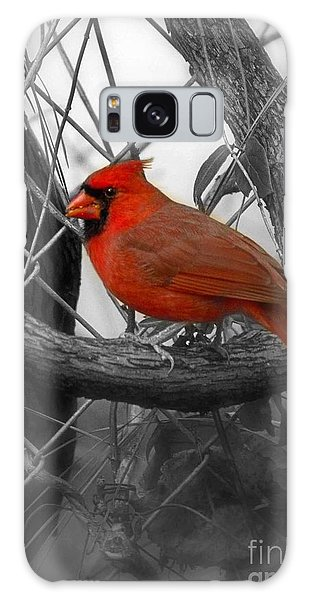 Mr Cardinal -card Galaxy Case