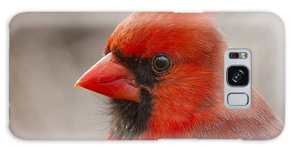 Mr Cardinal Portrait Galaxy Case