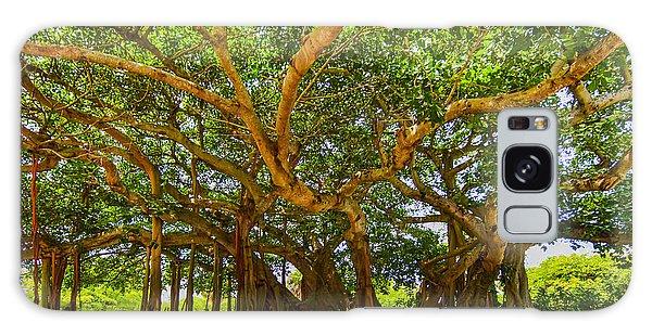 Mr. Mac's Tree Galaxy Case