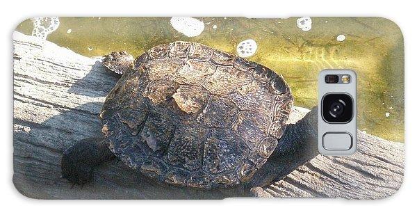 Mr Camaflauged Turtle Galaxy Case