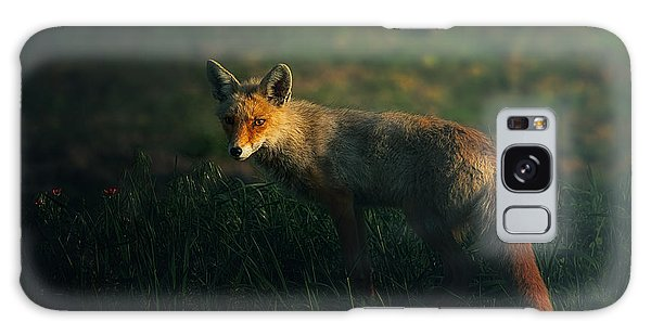 Furry Galaxy S8 Case - Mr.fox by Sina Pezeshki