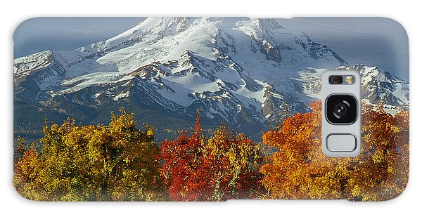 1m5117-mt. Hood In Autumn Galaxy Case