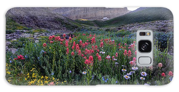 Indian Peaks Wilderness Galaxy Case - Mt. Timpanogos Wildflowers At Sunset by Gary Whitton