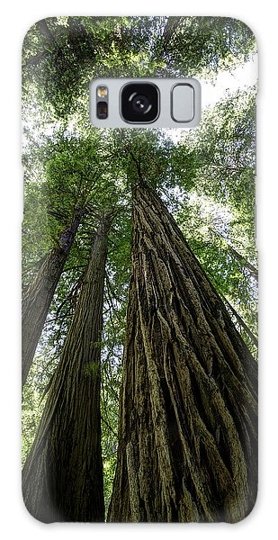 Muir Woods I Galaxy Case