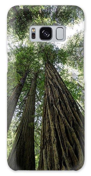 Muir Woods I Galaxy Case