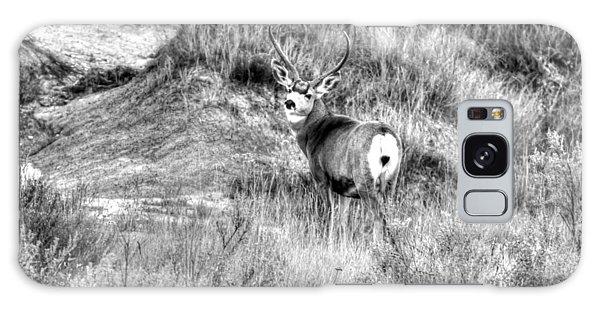 Mule Buck B/w Galaxy Case