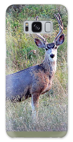 Mule Deer Buck Galaxy Case by Karen Shackles