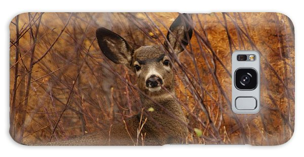 Mule Deer Doe Galaxy Case