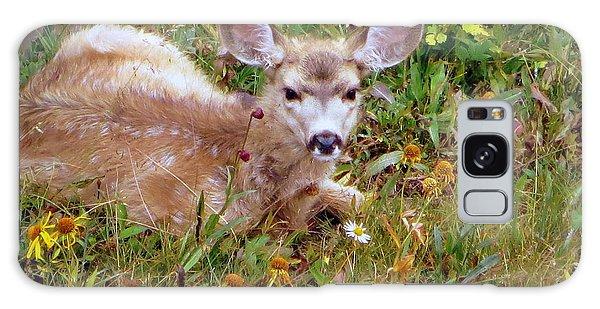 Mule Deer Fawn Galaxy Case