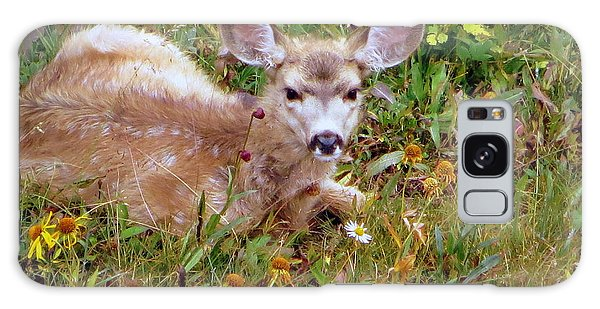 Mule Deer Fawn Galaxy Case by Karen Shackles