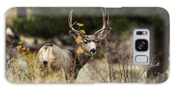 Antlers Galaxy Case - Mule Deer I by Chad Dutson