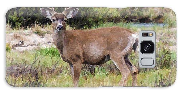 Mule Deer In Early Velvet Galaxy Case